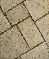 Small photo of Tumbled Travertine
