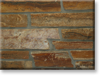 Small photo of Turning Leaf  Quartzite Ledge