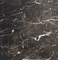 "Small photo of Laurent Brown Polished Marble 12"" x 12"""
