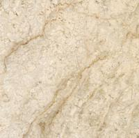 "Small photo of Oyster Beige Polished Marble 12"" x 12"""