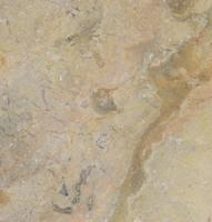 "Small photo of Sahara Gold Polished Marble 12""X12"""