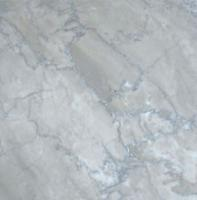 "Small photo of Temple Gray Polished Marble 12""x12"""