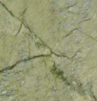 "Small photo of Veggie Green Polished Marble 12""x12"""