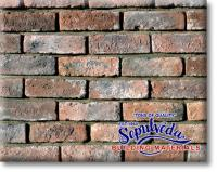 Small photo of Special Used Brick - Red Used