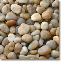 "Small photo of Yellow Polished Pebble 1"" to 2"" size 55lb Bag"
